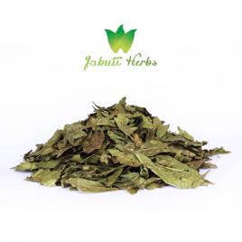 Chacruna (Psychotria viridis) – dried leaves