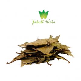 Chaliponga (Diplopterys cabrerana) // whole dried leaves